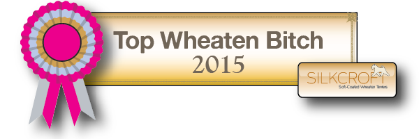 TWB2015