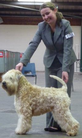 Keyser National Terrier 2012