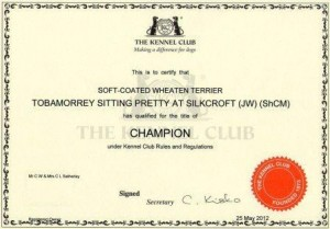 Libby Champion Certificate