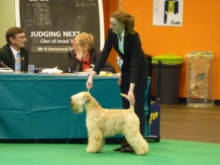 Millie Crufts 2013