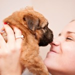 Silkcroft Puppy - Week 5