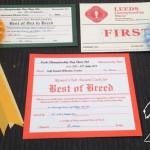 Rosettes from Leeds 2014 - Silkcroft