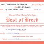 Best Of Breed Leeds 2014 - Silkcroft