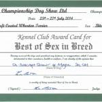 Best Of Sex Leeds 2014 - Silkcroft