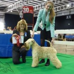 CH Silkcroft Colour Of Magic ShCM - Birmingham 2014 Millie, Harriet & Judge Sandy Tanner