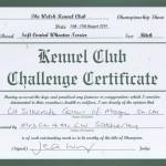 WKC BCC Silkcroft 2014