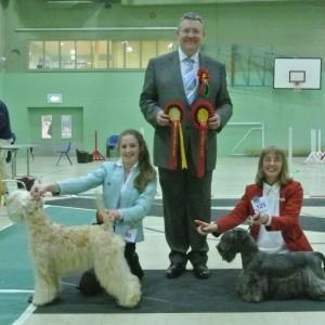 Lola Reserve Best Puppy in Show at Devon Terrier