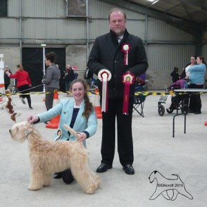 Lola wins St Austell & District 2015
