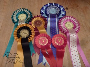 Potteries & District 2015 Rosettes - Silkcroft Soft Coated Wheaten Terriers 2015