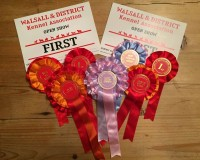 Walsall & District open show 2015