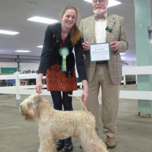 Millie Wins CC at Birmingham National 2016
