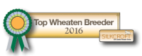 Top Wheaten Breeder 2016