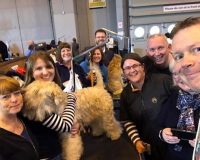 Team Silkcroft at Crufts 2017 - Silkcroft Soft Coated Wheaten Terriers 2017