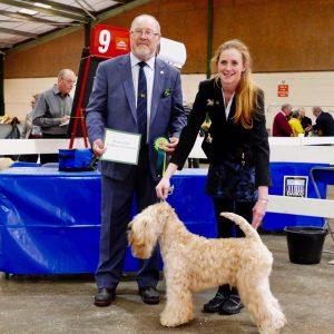 Beckett Wins 1st CC at National Dog Show 2017