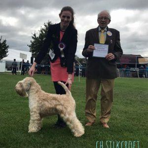 Beckett Wins 4th CC At Darlington 2017