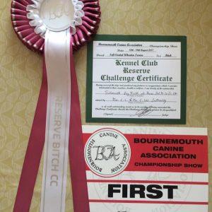 Lola Wins RCC at Bournmouth 2017