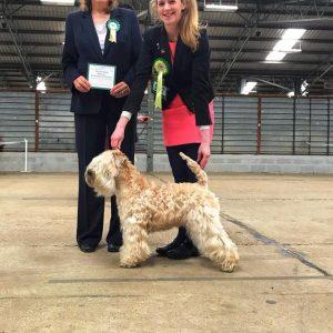 Lola Wins RCC at WELKS 2018