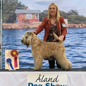 Lucas BEST OF BREED at Eckero Aland Show 2017